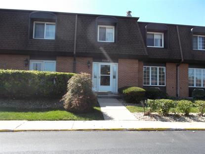 3216 Chestnut Drive Flossmoor, IL MLS# 09020778