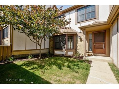 1037 Wheaton Oaks Drive Wheaton, IL MLS# 09023066