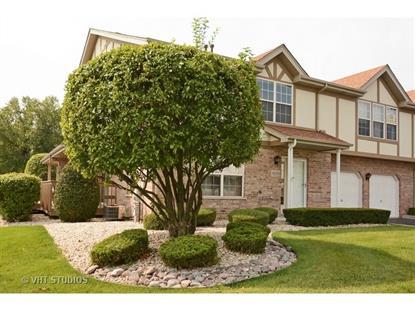 18203 Eagle Drive Tinley Park, IL MLS# 09026628