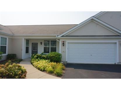 13517 Yellow Pine Drive Huntley, IL MLS# 09027151