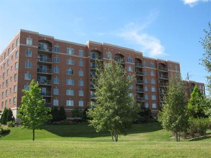 370 S Western Avenue Des Plaines, IL MLS# 09027978
