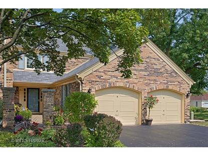 6 The Court Of Overlook Bluff  Northbrook, IL MLS# 09034229