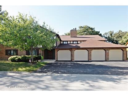 7762 W ARQUILLA Drive Palos Heights, IL MLS# 09036732