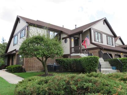 13325 S OAK HILLS Parkway Palos Heights, IL MLS# 09037581