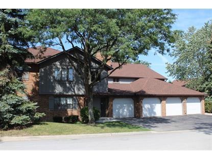 13156 S Oak Ridge Trail Palos Heights, IL MLS# 09038185