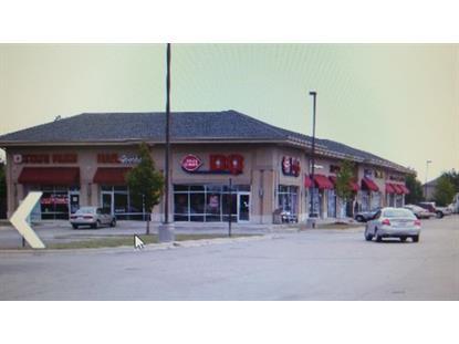 2735 111 Street Naperville, IL MLS# 09039901