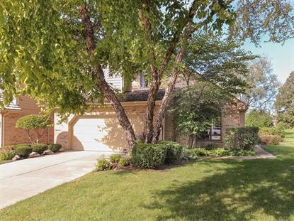 8440 Evergreen Lane Darien, IL MLS# 09040181