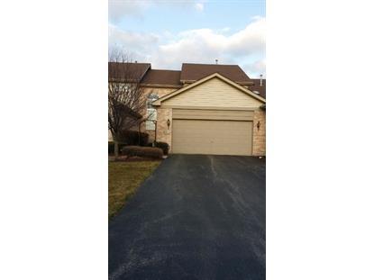 65 Odyssey Drive Tinley Park, IL MLS# 09040372