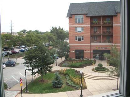 945 Burlington Avenue Downers Grove, IL MLS# 09041373