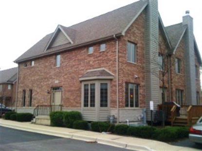 1522 Stonegate Manor  Mount Prospect, IL MLS# 09043561
