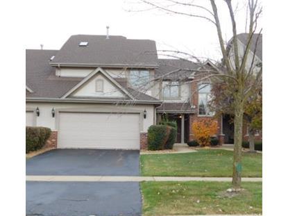 21337 Settlers Pond Drive Frankfort, IL MLS# 09049114