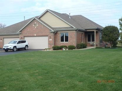 20514 Lennon Court Frankfort, IL MLS# 09049874