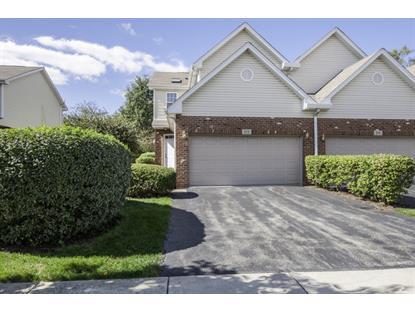 513 GOODWIN Drive Bolingbrook, IL MLS# 09050981