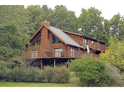 Real Estate for Sale, ListingId: 35700284, Putnam,IL61560