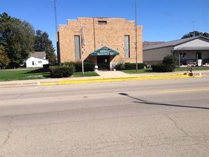 123 S Main Street Ladd, IL MLS# 09054162