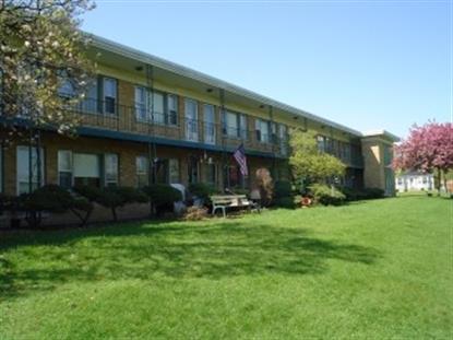 103 S Villa Avenue Addison, IL MLS# 09054628