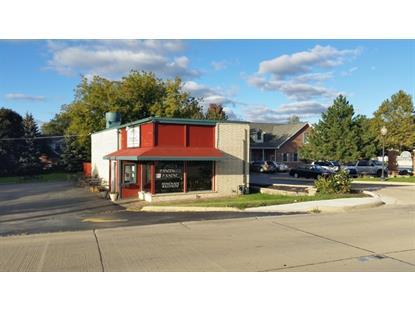 119 W Lake Street Bloomingdale, IL MLS# 09054810