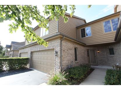 170 Santa Fe Lane Willow Springs, IL MLS# 09060171