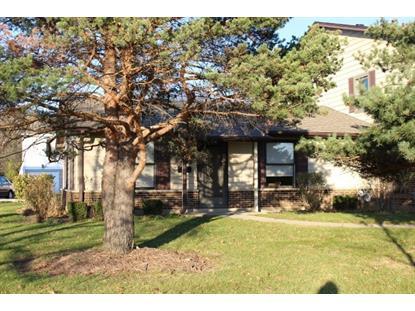 815 Pahl Road Elk Grove Village, IL MLS# 09060945