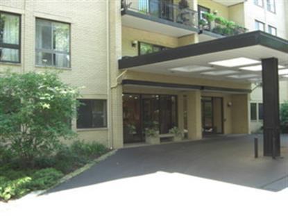 221 N Kenilworth Avenue Oak Park, IL MLS# 09061204