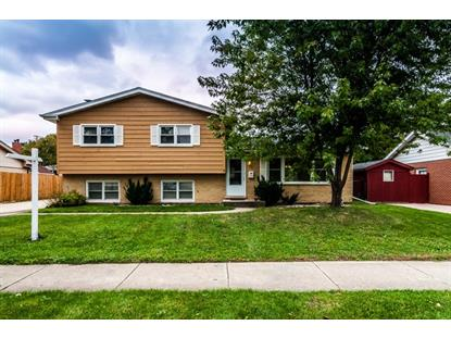 250 Prospect Avenue Wood Dale, IL MLS# 09062545