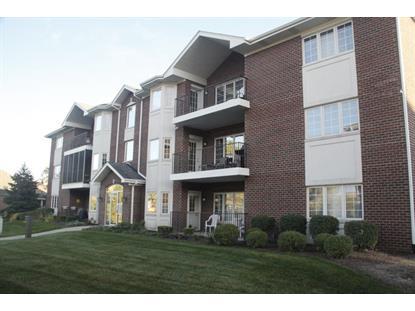 13078 Laurel Glen Court Palos Heights, IL MLS# 09064011