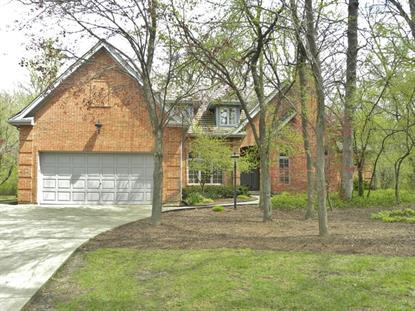 1565 WOOD CREEK Trail Bartlett, IL MLS# 09064559