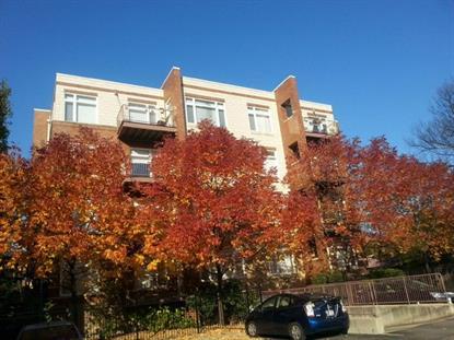 515 N Harlem Avenue Oak Park, IL MLS# 09066723