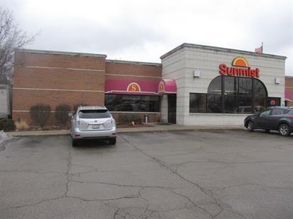 501 E Lake Street Addison, IL MLS# 09068101