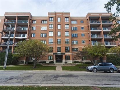 1636 Ashland Avenue Des Plaines, IL MLS# 09068600