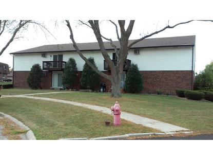 1108 Shagbark Court New Lenox, IL MLS# 09069438