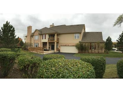 3901 Spyglass Circle Palos Heights, IL MLS# 09076518