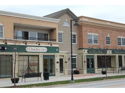 29 OLD FRANKFORT Way Frankfort, IL MLS# 09080615
