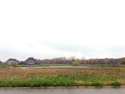 Lot 21 Prairie Rose Drive St Charles, IL MLS# 09081183