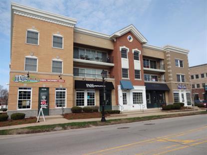 17212 Oak Park Avenue Tinley Park, IL MLS# 09081721