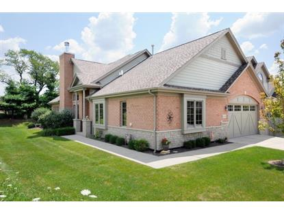 20383 Grosse Point Drive Frankfort, IL MLS# 09083551