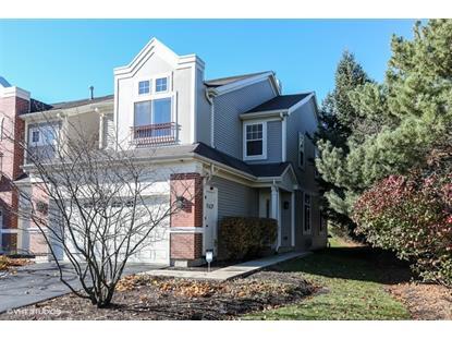3304 Rosecroft Lane Naperville, IL MLS# 09090387