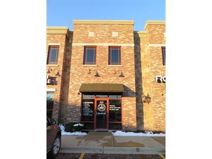 802 W Bartlett Road Bartlett, IL MLS# 09097591