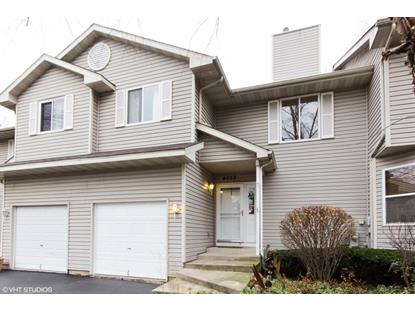 4223 Whitetail Court Joliet, IL MLS# 09098871