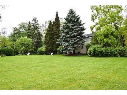 635A Birchwood Avenue Des Plaines, IL MLS# 09100654