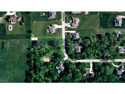 Lot 30 E Mitchel Drive Plano, IL MLS# 09103810
