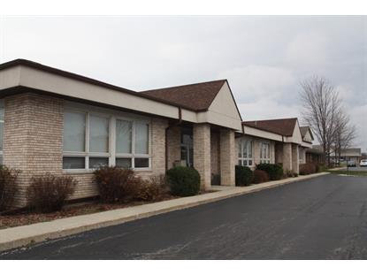 115 Commerce Drive Grayslake, IL 60030 MLS# 09106221