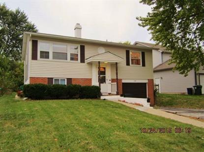 630 N California Avenue, Mundelein, IL