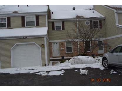 824 Banyan Drive Elk Grove Village, IL MLS# 09118340