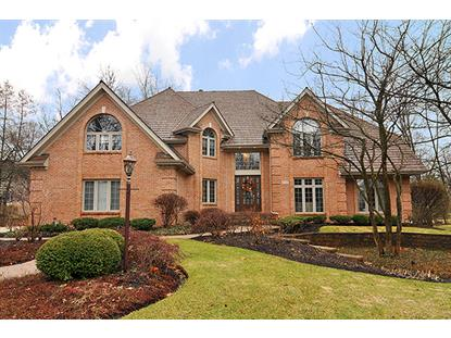212 CROOKED TREE Court Naperville, IL MLS# 09119466