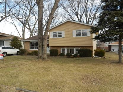 17325 64th Court Tinley Park, IL MLS# 09127986