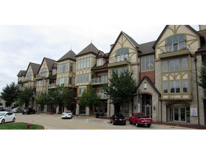 450 S 1st Street St Charles, IL MLS# 09129377