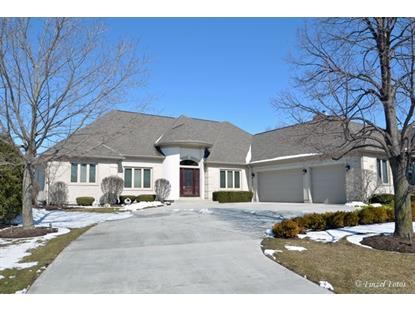 3431 SANDSTONE Court Lake in the Hills, IL MLS# 09156966
