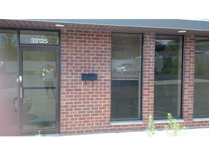 33125 N 45 Highway Grayslake, IL 60030 MLS# 09163338