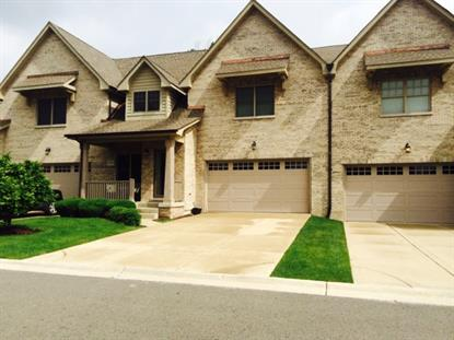 1226 Darien Path Way Darien, IL MLS# 09172398